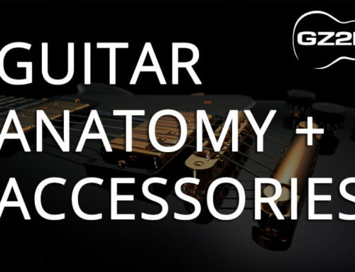 GUITAR ANATOMY & ACCESSORIES