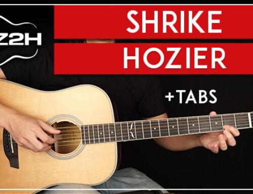 SHRIKE – HOZIER GUITAR LESSON